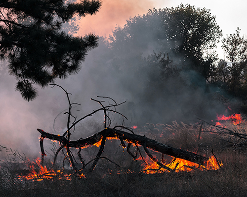 wildfire stock photo from ADRA