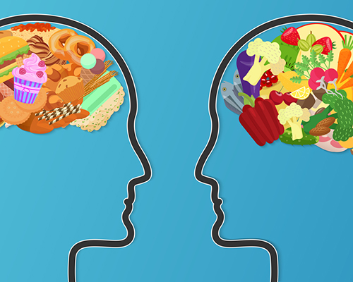 stock photo healthy brain food versus junk food