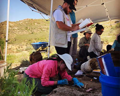 Participants of the Dinosaur Research Project work on a dig site