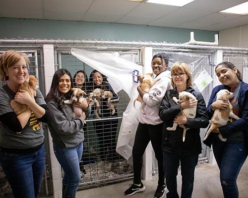 SWAU Ignite Day animal shelter