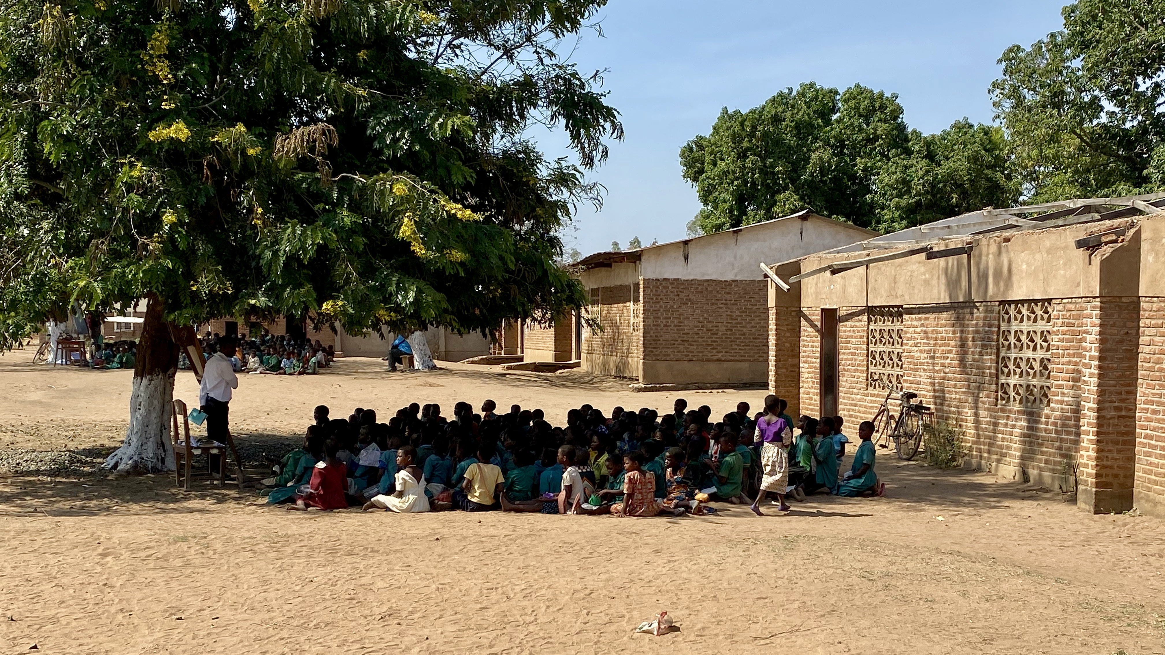 Malawian students sit under outside under a tree for class time.