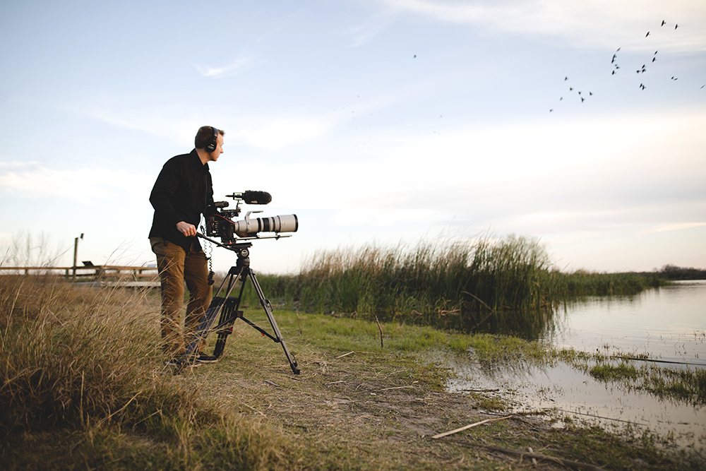 "Filmmaker Mark Paden films grackles for the short film ""God's Enduring Song of Love."" Image courtesy of Geoscience Research Institute"