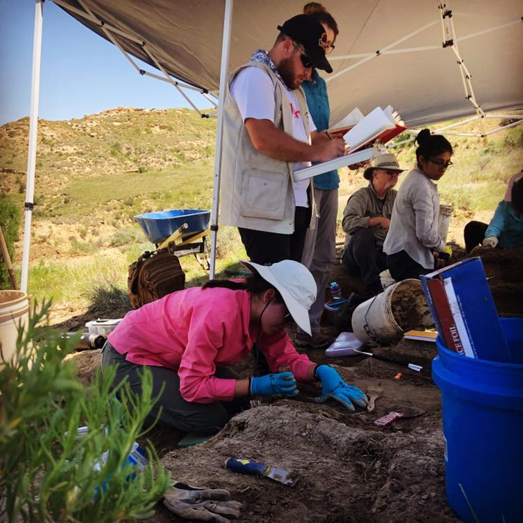Dinosaur Research Project participant, Diana Tanksley, works on the dig site in Wyoming.